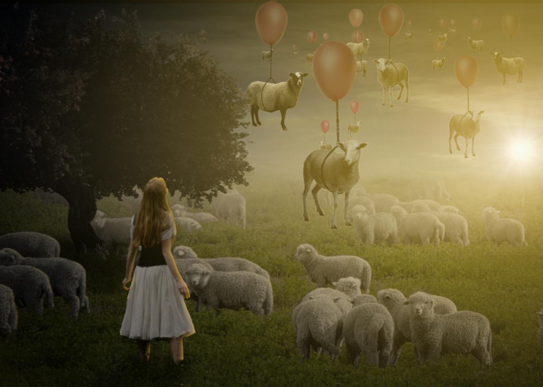 magic lamb