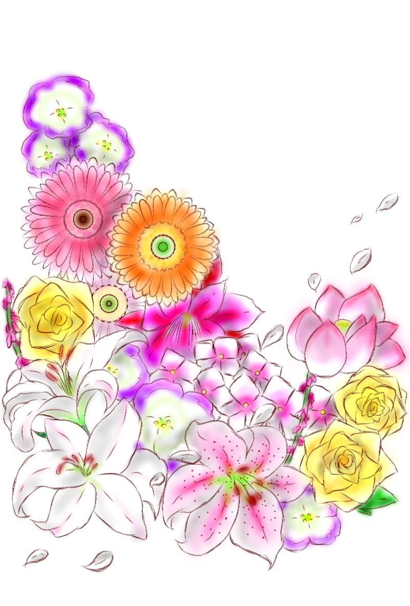 7月と7月4日の誕生花