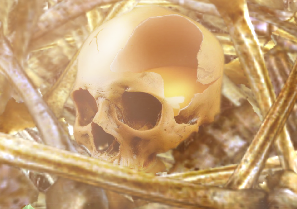 An egg in the skull