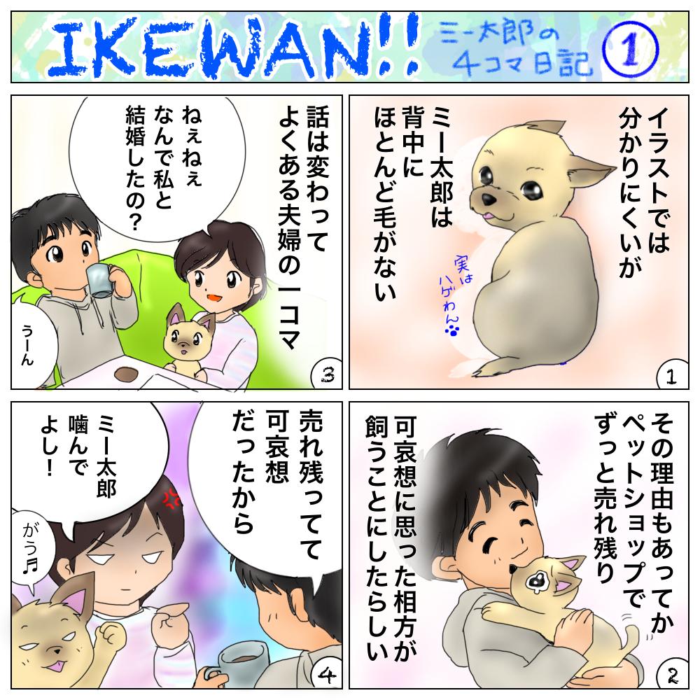 イケワン‼︎ ミー太郎の4コマ日記